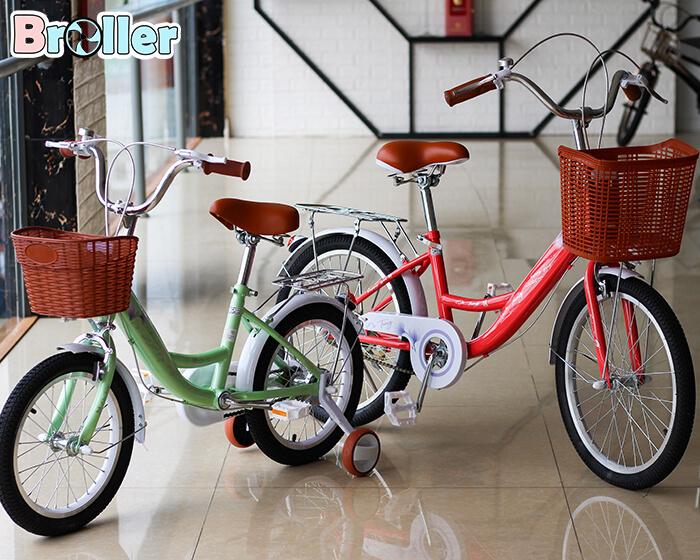 Xe đạp 2 bánh cho bé TNXTC-069B 20 inch 8